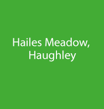 Hailes Meadow, Haughley